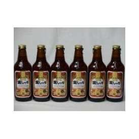 クラフトビールパーティ6本セット 金しゃちアルト330ml×6本