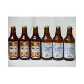 クラフトビールパーティ6本セット 金しゃちアルト330ml×3本 プラチナエール330ml×3本