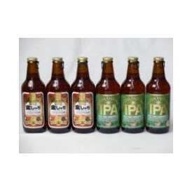 クラフトビールパーティ6本セット 金しゃちアルト330ml×3本 IPA330ml×3本