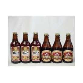 クラフトビールパーティ6本セット金しゃちアルト330ml ミツボシペールエール330ml