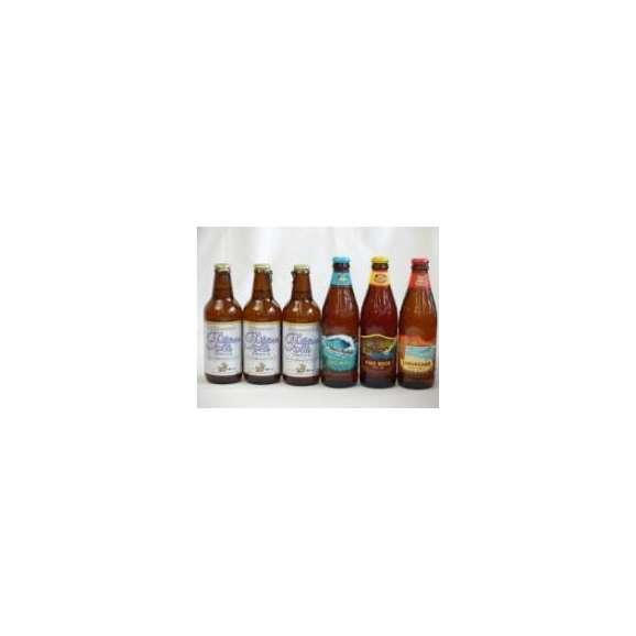 クラフトビールパーティ6本セット プラチナエール330ml×3本 ハワイコナビールファイアーロック・ペールエール355ml ロングボードアイランドラガー355ml ビッグウェーブ・ゴールデンエール3501