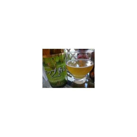クラフトビールパーティ6本セット プラチナエール330ml×3本 ハワイコナビールファイアーロック・ペールエール355ml ロングボードアイランドラガー355ml ビッグウェーブ・ゴールデンエール3502