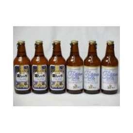 クラフトビールパーティ6本セット 金しゃちピルスナー330ml×3本 プラチナエール330ml×3本