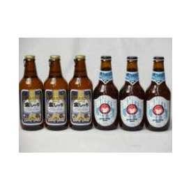 クラフトビールパーティ6本セット 金しゃちピルスナー330ml×3本 常陸野ネストホワイトエール330ml×3本