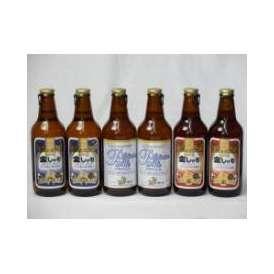 クラフトビールパーティ6本セット 金しゃちピルスナー330ml×2本 プラチナエール330ml×2本 金しゃちアルト330ml×2本