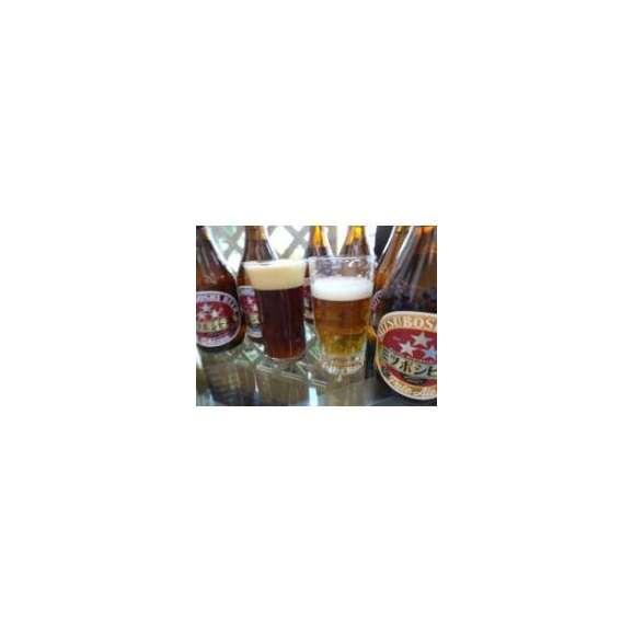 クラフトビールパーティ6本セット 名古屋赤味噌ラガー330ml×3本 ミツボシウィンナスタイルラガー330ml×3本03