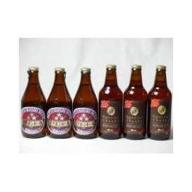 クラフトビールパーティ6本セット IPA感謝ビール330ml×3本 ミツボシヴァイツェン330ml×3本