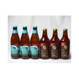 クラフトビールパーティ6本セット IPA感謝ビール330ml×3本  ビッグウェーブ・ゴールデンエール355ml×3本
