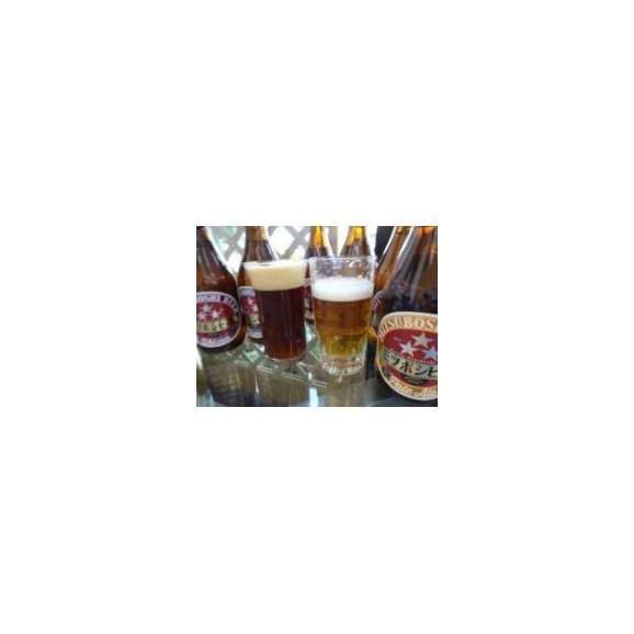 クラフトビールパーティ3本セット ミツボシウィンナスタイルラガー330ml×2本 日本酒スパークリング清酒(澪300ml)03
