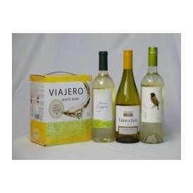 チリ産大容量白ワイン飲み比べセット(VIAJERO(ヴィアヘロ 白ワイン  3000ml クレマスキ リゲロ ビアンコ チリ白ワイン  750ml テラ・スル シャルドネ チリ白ワイン 750ml デ