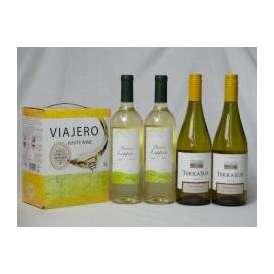 チリ産大容量白ワイン飲み比べセット(VIAJERO(ヴィアヘロ 白ワイン  3000ml クレマスキ リゲロ ビアンコ チリ白ワイン  750ml×2本 テラ・スル シャルドネ チリ白ワイン 750m