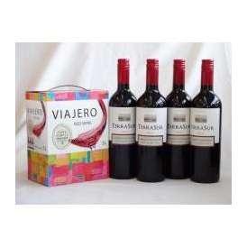 チリ産大容量赤ワイン飲み比べセット(ヴィアヘロ 赤ワイン ミディアムボディ 3000ml  テラ・スル カベルネ  ミディアムボディ 750ml×4本)