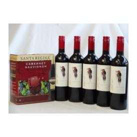 チリ産大容量赤ワイン飲み比べセット(サンタ・レジーナ カベルネ・ソーヴィニヨン 赤ワイン フルボディ3000ml デル・スール・カベルネソーヴィニヨン チリ赤ワイン フルボディ 750ml×5本)