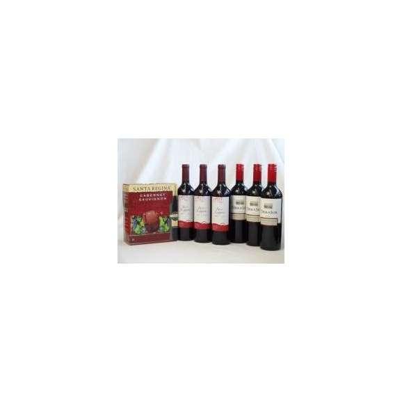 チリ産大容量赤ワイン飲み比べセット(サンタ・レジーナ カベルネ・ソーヴィニヨン 赤ワイン フルボディ3000ml クレマスキ リゲロ・ロッソ チリ赤ワイン ミディアムボディ 750ml×3 テラ・スル01