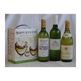フランス産大容量ワイン白飲み比べセット1(サン ヴァンサン ブラン フランス 白ワイン 辛口 3000ml シュヴァリエ・デュ・ルヴァン 750ml キュべェ・ブレヴァン 750ml パスカル シータ