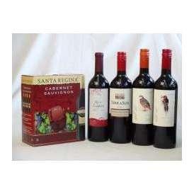 チリ産大容量赤ワイン飲み比べセット1(サンタ・レジーナ カベルネ・ソーヴィニヨン 赤ワイン フルボディ3000ml デル・スール・カベルネソーヴィニヨン チリ赤ワイン フルボディ 750ml デル・ス