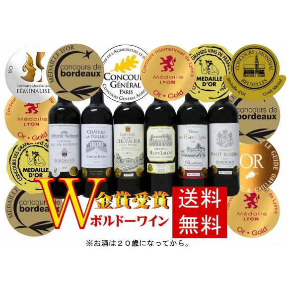 ALLダブル金賞受賞 ソムリエ厳選 フランス・ボルドー産赤ワイン6本セット 750ml×6本母の日01