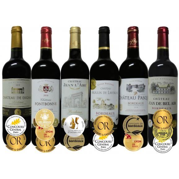 ALLダブル金賞受賞 フランスボルドー赤ワイン6本セット 赤ワインセット ソムリエ厳選 750ml×6本01