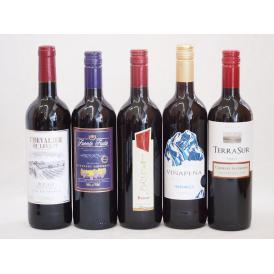 送料無料!感謝セール!ワインセット セレクション 赤ワイン 5本セット( スペイン 1本 フランス 1本 イタリア 1本 チリ2本)