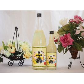 すっぱドライ サワー専用 ゆずレモン大小2本セット 25度 小鶴醸造(鹿児島県)1800ml 600ml×1