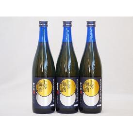 上等梅酒 星舎無添加 梅の香りにブランデーの華やかさが加え 本坊酒造(鹿児島県)720ml×3