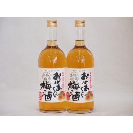 紀州産南高梅100% おばあちゃんの梅酒 中埜酒造 720ml×2