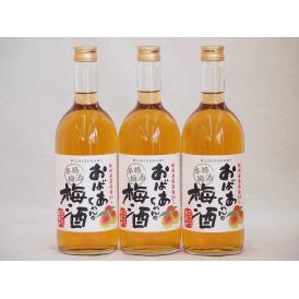 紀州産南高梅100% おばあちゃんの梅酒 中埜酒造 720ml×3