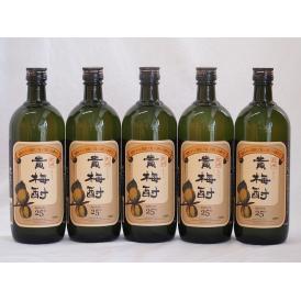 紀州貴梅酎 梅酒スピリッツ25度 中野BC(和歌山県)720ml×5