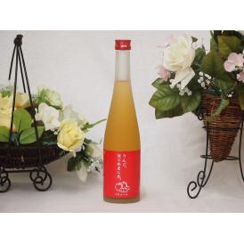 篠崎 りんご梅酒りんご、はじめました(福岡県)500ml×1本