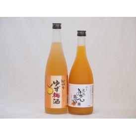 果物梅酒セット ゆず梅酒×完熟みかん梅酒 中野BC(和歌山県)720ml×2本