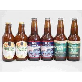 フルーツドラフト×横浜クラフトビール アプリコット&オレンジ 発泡酒 金しゃちビール(愛知県)330ml×6本