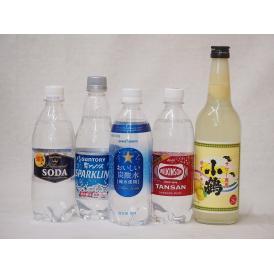 飲み比べ炭酸水で酎ハイ5本セット(ウイルキンソンタンサン 炭酸水ペット サッポロおいしい炭酸水ペット