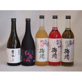 梅酒のみ比べ5本セット(紅南高梅酒20度(和歌山) 赤しそ赤い梅酒(和歌山) 梅酒 鶯の杜(奈良)