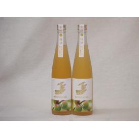 梅酒2本セット(金鯱梅酒) 500ml×2本
