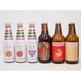 クラフトビールとリキュール6本セット(ヒュヴァ リンゴサワーalc.5% ヒュヴァ 巨峰サワーalc