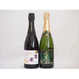 スパークリングワイン飲み比べ2本セット(ナイアガラスパークリング白ワインやや甘口 京都丹波産スパーク