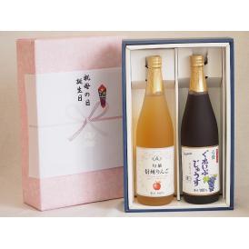 感謝の贈物ボックス ワイン蔵のジュース2本セット(信州りんご果汁100% 有機コンコードぶどう果汁1