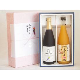 感謝の贈物ボックス 果汁100%ジュースと果物梅酒2本セット(信州ぶどうコンコード果汁100% 5種