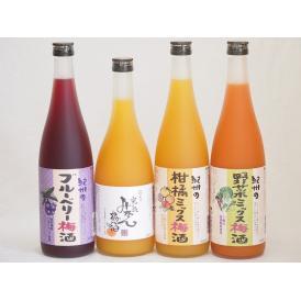 果物梅酒4本セット(岩手県産ブルーベリー梅酒 5種の和歌山県産柑橘ミックス梅酒 7種の国産野菜ミック
