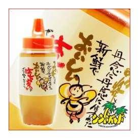 おいしいはち蜜(はちみつ) 八女養蜂場 500グラム 蜂蜜 福岡県
