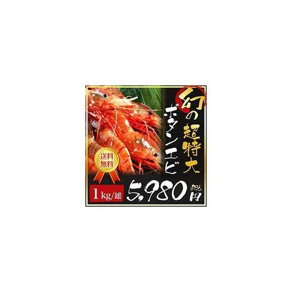 幻のボタンエビ(オス)01