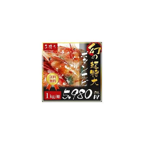 幻のボタンエビ(メス)01
