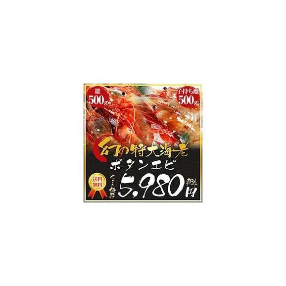 幻のボタンエビ(オス)×幻のボタンエビ(メス)01