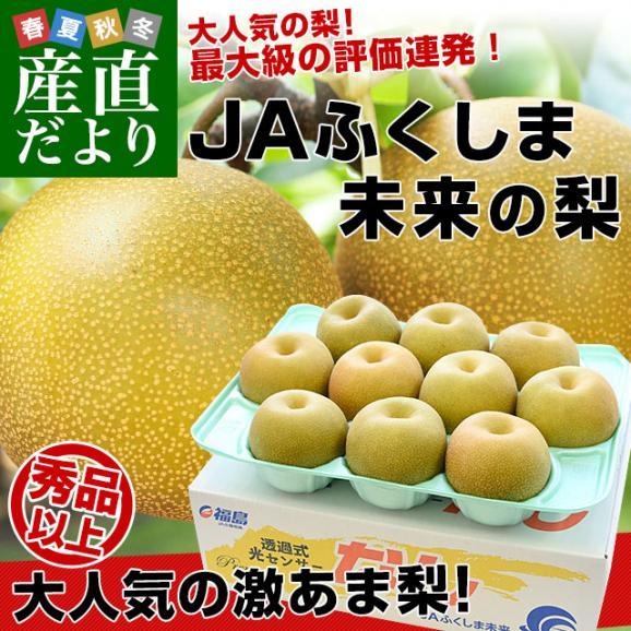 福島県より産地直送 JAふくしま未来の梨 (あきづき梨)約3キロ(6玉から10玉) 送料無料 なし 梨 ナシ02