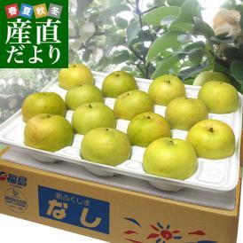 送料無料 福島県より産地直送 JAふくしま未来 二十世紀梨 秀品 約5キロ (12玉から16玉) 梨 なし