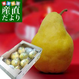 超高級洋ナシ!大切な人の数しか実らないと言われる特別な果物。