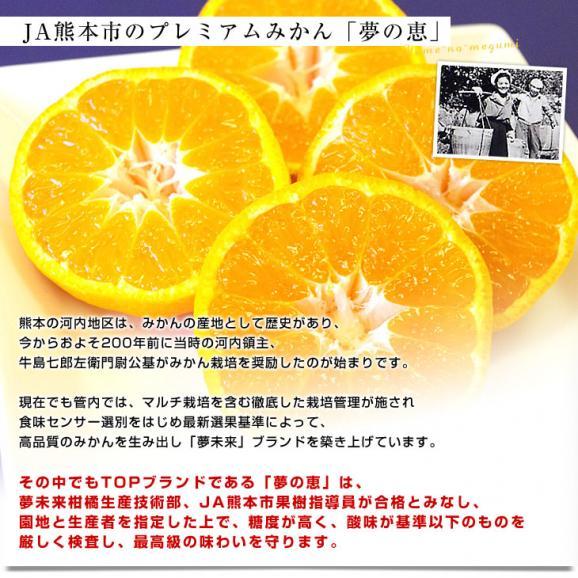 送料無料 熊本県より産地直送 JA熊本市 夢未来プレミアムみかん 夢の恵 LからSサイズ 5キロ(40玉から60玉) 05
