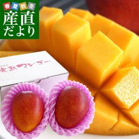大玉で美味しい宮崎マンゴー!圧倒的美味と感動をお届けします。