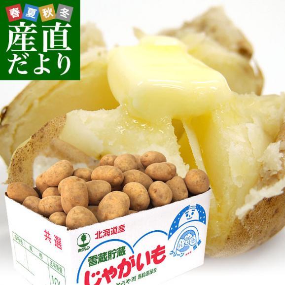 北海道より産地直送 JAとうや湖 雪蔵貯蔵じゃがいも (男爵) Mサイズ 10キロ  送料無料 芋 ジャガイモ 馬鈴薯 01
