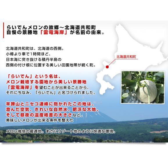 北海道より産地直送 JAきょうわ らいでんメロン 赤肉 超大玉 8キロ(2キロ×4玉)送料無料 共和町 北海道メロン お中元ギフト06